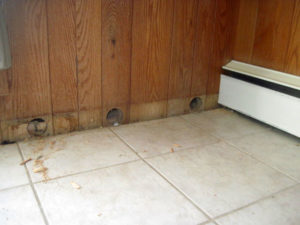 interior wall insulation